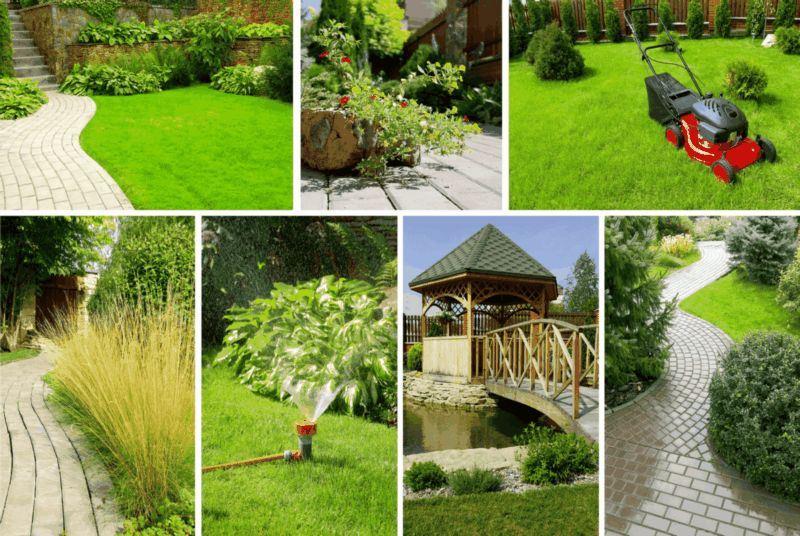Turf Grass Renovation Don S Lawn Care Landscape Design