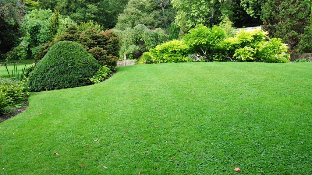 Don's Lawn Care, Landscapers, Professional Snow Removal
