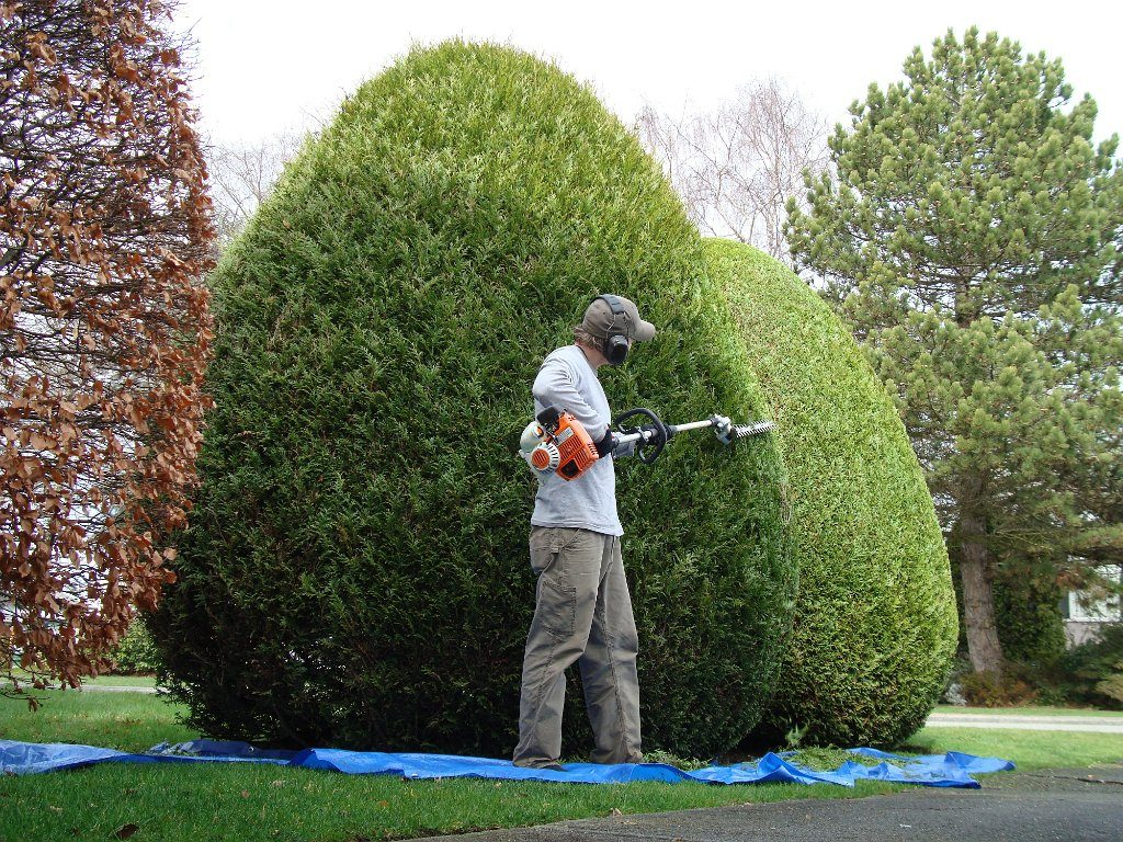 Don's Lawn Care and Snow Removal in the Greater Kingsport, Johnson City, Bristol  Area, Gray, Sullivan County, Hawkins County, and More, Southwest Virginia, Kingsport, Johnson City, Bristol , +